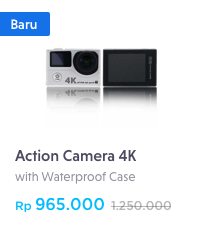 remax action camera
