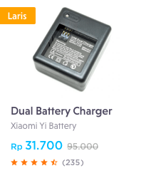 6 dual battery charger