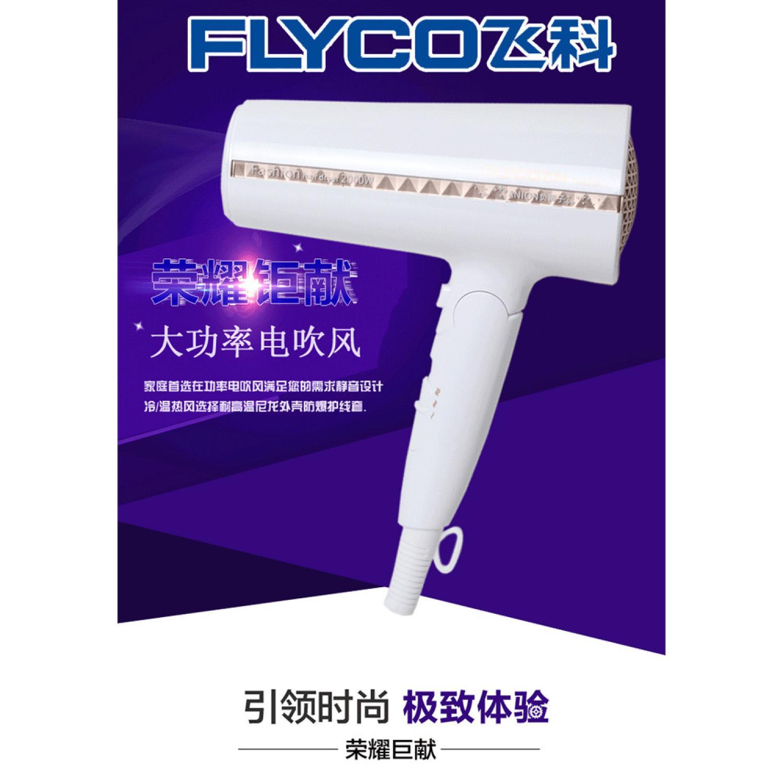 Flyco Fashion Hair Dryer - FH6228